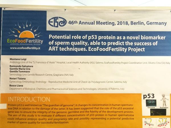 Berlino Meeting internazionale Tossicologia 2018 5